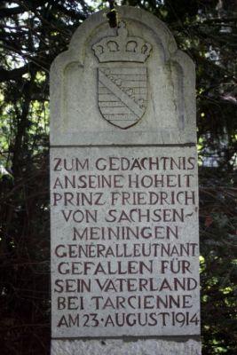 Tarcienne, cimetière franco-allemand 2014